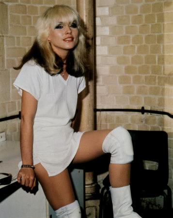 blondie white.jpg (37 KB)
