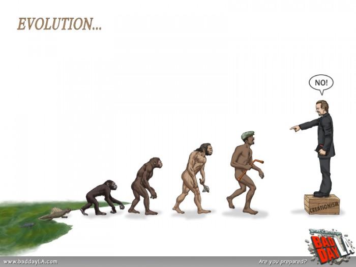 bdla_evolution_800