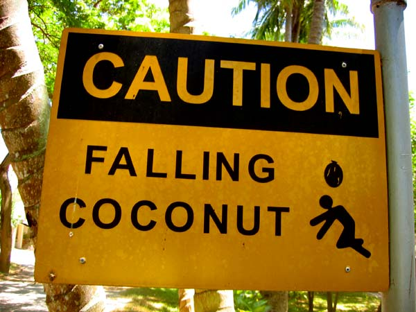 fallingnuts Caution! Careful of the Nuts Humor