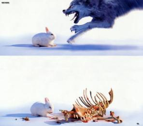 raptor bunny.thumbnail Raptor Bunny Humor Cute As Hell Animals