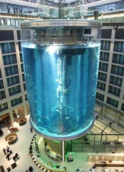 aquarium-hueg.jpg