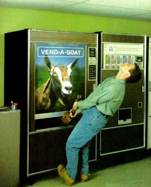 vend-a-goat.jpg