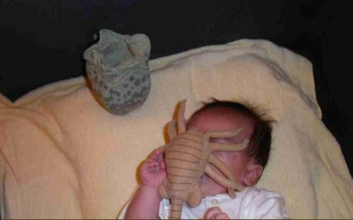 lo.thumbnail Baby Face Hugger Movies Humor Fantasy   Science Fiction