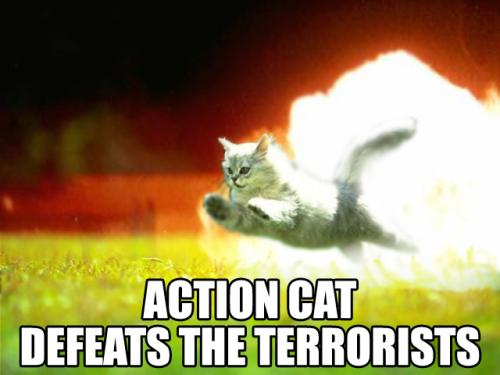 action-cat-defeat-the-terrorists.jpg