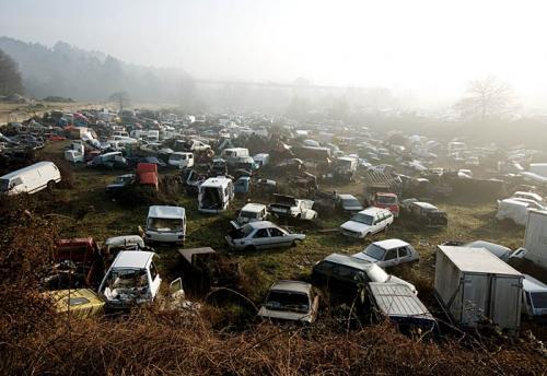 car-field.jpg