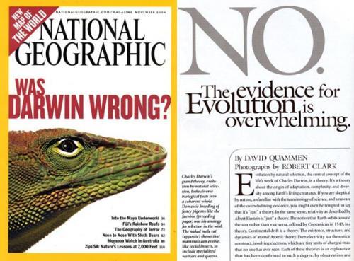 darwin no.thumbnail National Geographic: Was Darwin Wrong? Religion Politics Humor