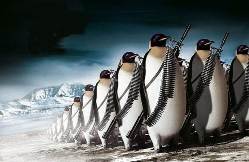 march-of-militant-penquins.jpg