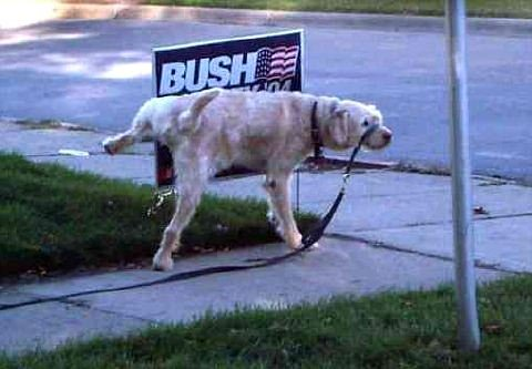 dog-pees-on-bush-sign.jpg