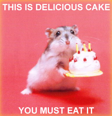 delicious-cake-must-eat.jpg