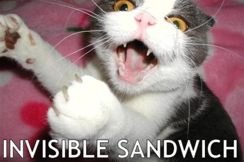 invisible-sandwich.jpg