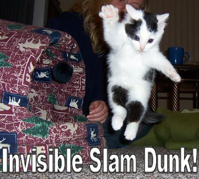 invisible-slam-dunk.jpg