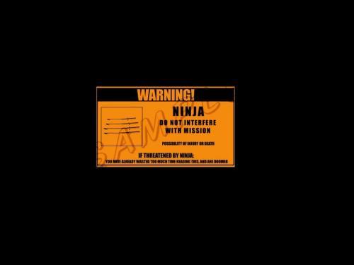 ninja-mission-warnng.jpg