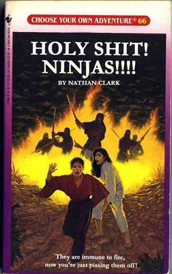 ninjas1.jpg