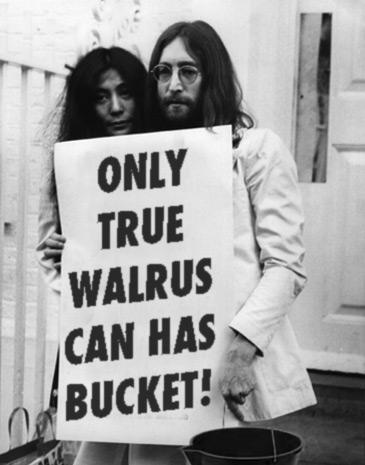True Walrus