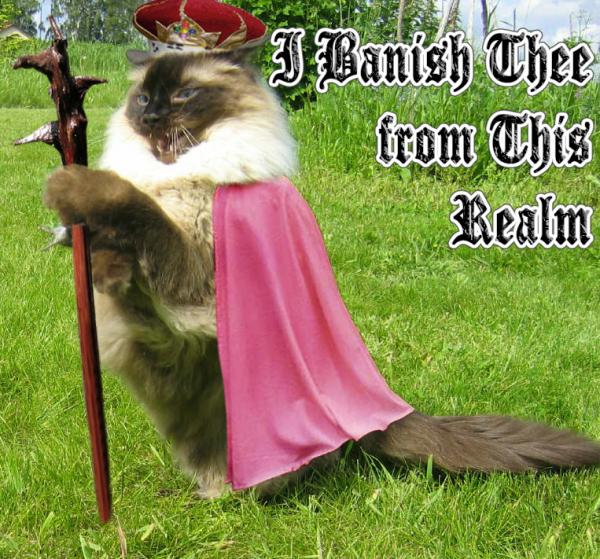 banish-thee-from-this-realm-cat.jpg