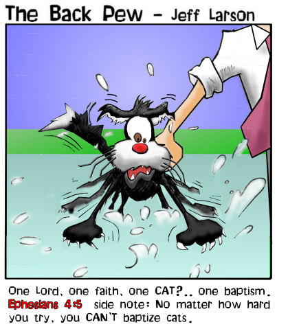 cat baptism Cat baptism wtf Religion Humor