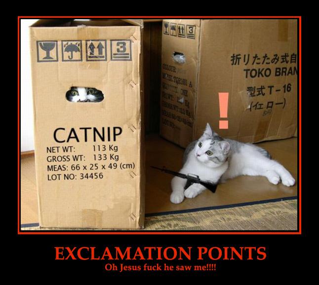 catboxmgs.jpeg