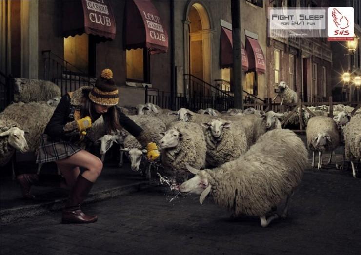 Kick Some Sheep's Ass!