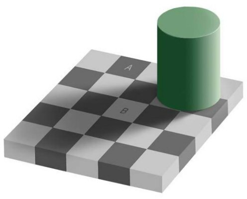 opticalgreysquaresarp Optical Illusion Visual Tricks