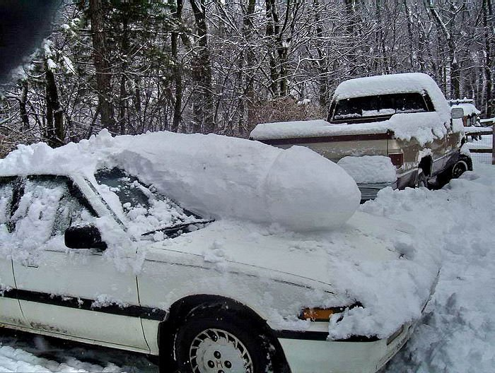 snow-penis.jpg