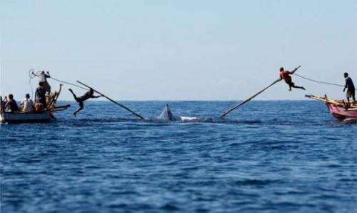 super-whaling.jpg