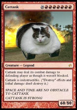 cattank Cattank lolcats Cute As Hell Animals CCG