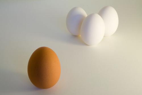 special-egg.jpg