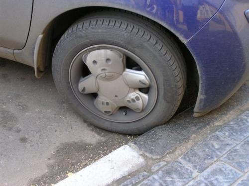65281927.thumbnail Teddy Bear Rims wtf Humor