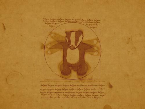 badger-wallpaper.jpg
