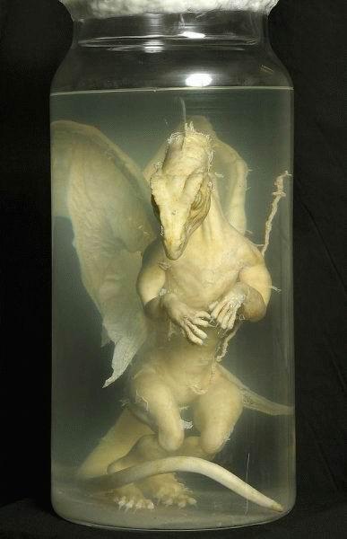 dragon-jar.jpg