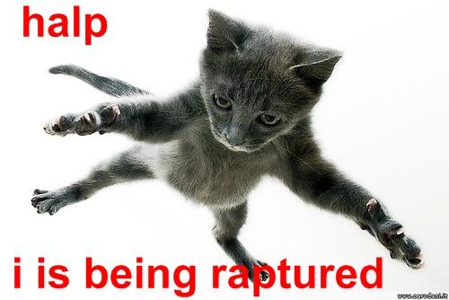Halp, i is being raptured