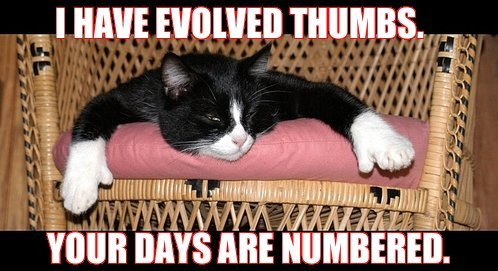 thumbs I have evolved thumbs.  Your days are numbered. wtf Science! Nature lolcats Cute As Hell Animals
