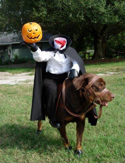 headless-dog-costume.jpg