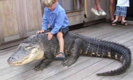 Kid on croc