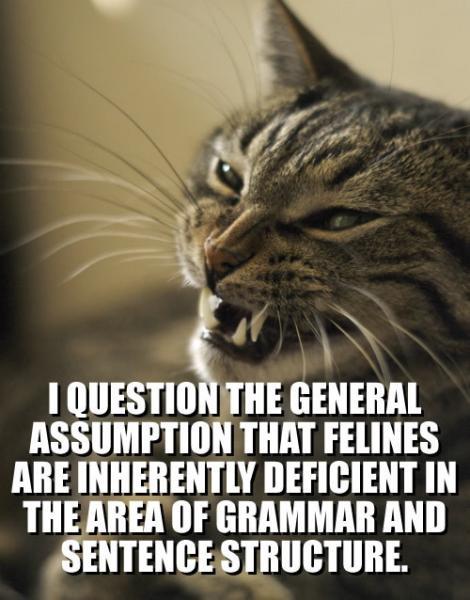 question-general-assumption.jpg