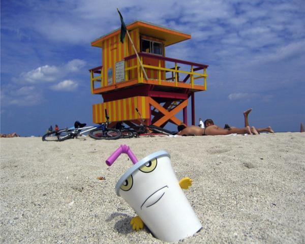 shake-beach.jpg