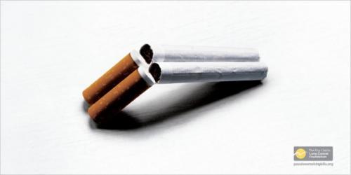 shotgun-cigs.jpg
