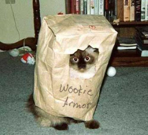 wookie-cat