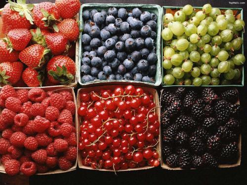 berry-boxes
