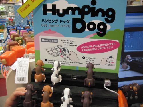 humping-dog