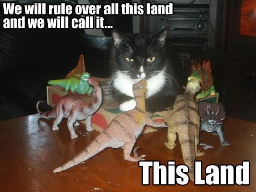 this-land