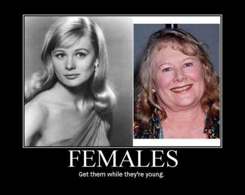 females.jpg