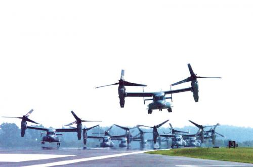 massive-osprey