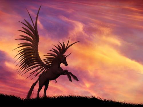 unicorn-sunset.jpg