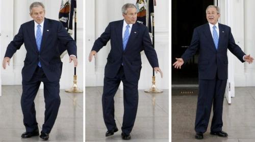 bush-dance.jpg