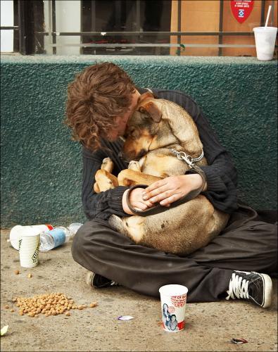 homeless_sleeping_dogbysamjavanrouh.jpg