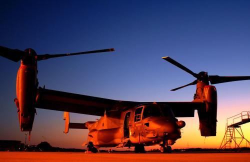 osprey-dusk.jpg