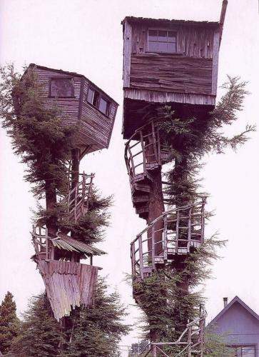 redneck-tree-house.jpg