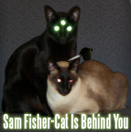 sam fisher.thumbnail Sam Fisher Cat Is Behind You lolcats Forum Fodder