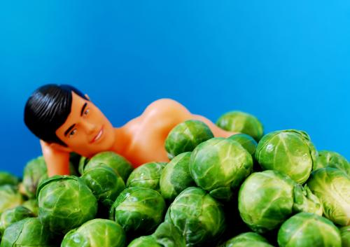 sprouts-toy.jpg